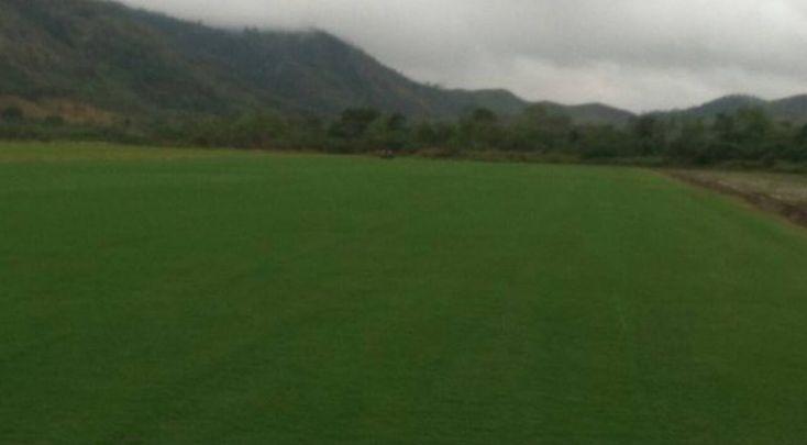 Maraca recebe novo gramado a partir de sexta; Fla vê retorno mais próximo      #globoesporte