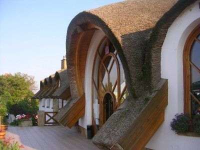 Thatched Roof. - very cool looking