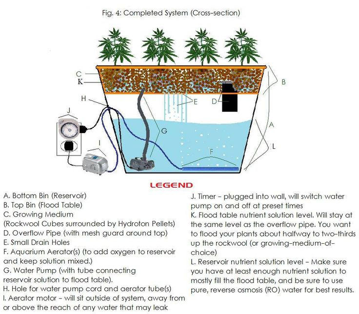 Build Your Own Hydroponic System For Less Than 100