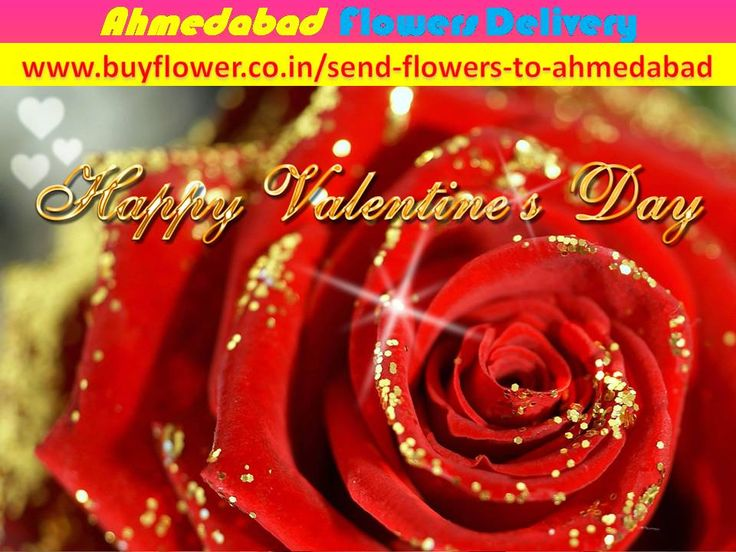 Happy Valentine Day 2016 I think Ahmedabad online florist gives you better function in any occasions. You can send flowers to Ahmedabad to your lover and relatives. http://www.buyflower.co.in/send-flowers-to-ahmedabad