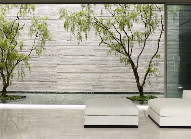Exterior pool with threes. 66MRN-House by ONG&ONG.