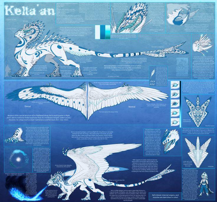 Kelta'an Reference Sheet (Eng) by ~Keltaan on deviantART