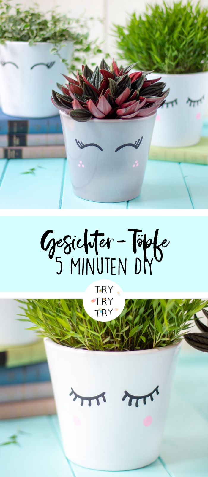 DIY Blumentopf-Upcycling & die besten Zimmerpflanzen für dein Zuhause // DIY Deko // DIY Pflanzen // Übertopf // Basteln mit Pflanzen
