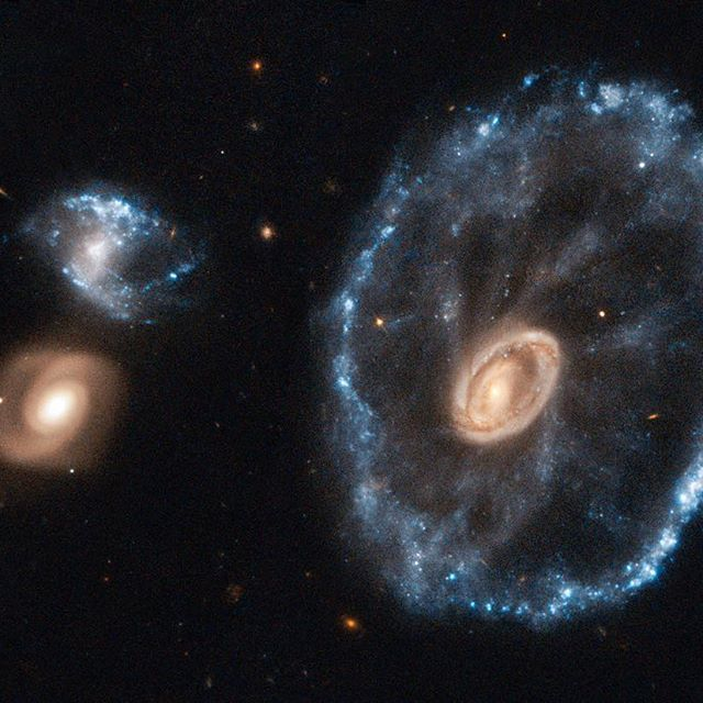 Rightfully named the Cartwheel Galaxy, this celestial object's shape is a result of a violent galactic collision. A smaller galaxy has passed right through a large disk galaxy and produced shock waves that swept up gas and dust, much like ripples produced when a stone is dropped into a lake. Intense areas of star formation were sparked up, seen here in blue by our Hubble Space Telescope (@NASAHubble). The outermost ring of the galaxy, which is 1.5 times the size of our Milky Way,
