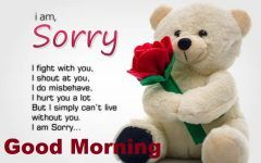 Good Morning Images With Sorry Quotes Goodmorningimagesnewcom
