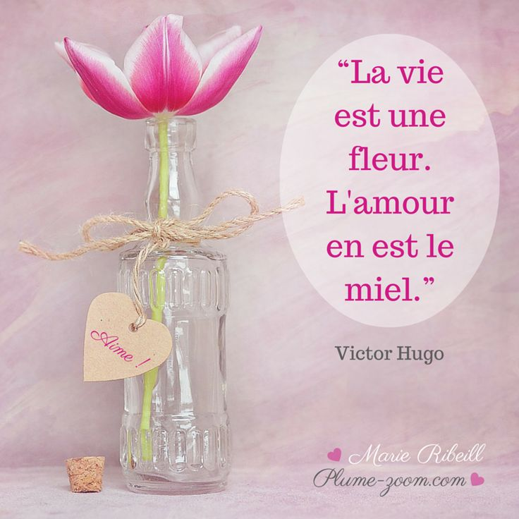#citation #amour #fleur #vie