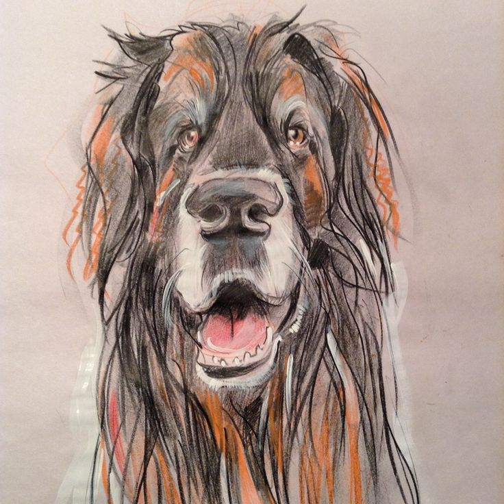 Portraits in my signature style May 17-June 30 for only $60 CAD! Free Shipping!
