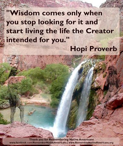 #Indian #quote #Hopi Proverb