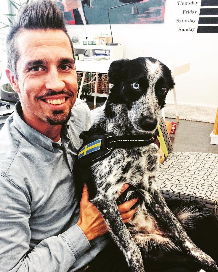 We had agility superstars as a guest today: Jouni Orenius and Neela #nutrolinlife #nutrolin #agility #awc2015 #winners #nutrolinsportti #bestfriends #bordercollie #caring #dog #dogsport