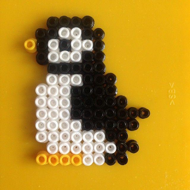 Penguin hama beads by tasarimhama