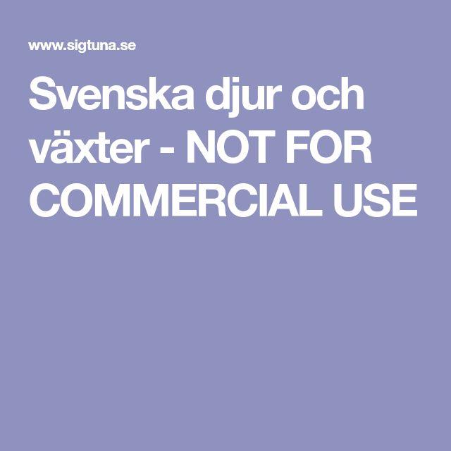 Svenska djur och växter - NOT FOR COMMERCIAL USE