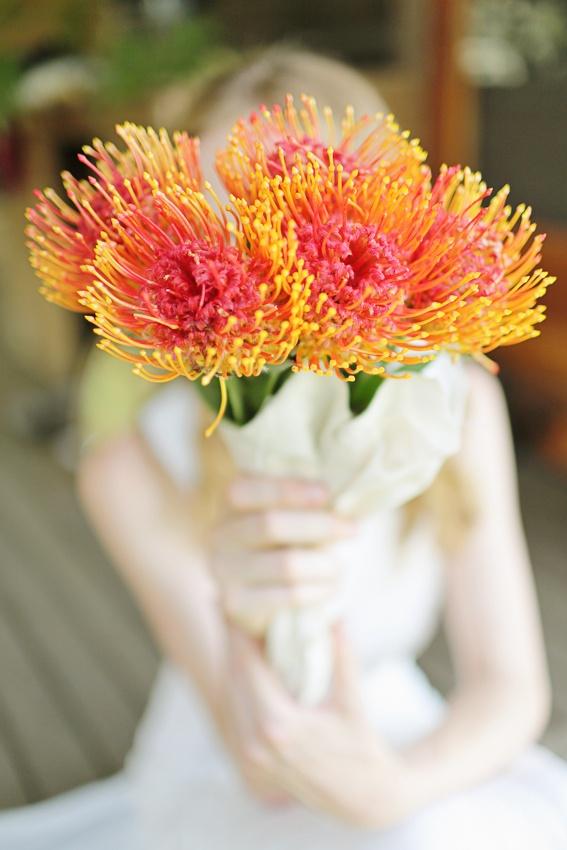 Gorgeous Australian native bridal bouquet