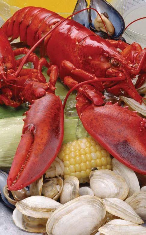 Legal seafood harborside wedding