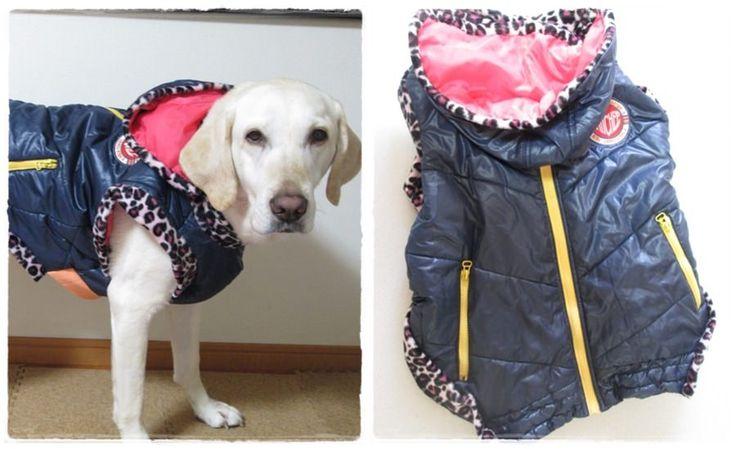第2回作品コンテストの応募作品  作者:ともぴー さん 題名:わんこ用フード付きコートエコ服 画像をクリックするとコンテスト結果がご覧いただけます◎  Applicants for the 2nd contest:   By: Tomopi,  Title: Eco-oriented  hooded dress for doggie   Click image to find the result.  #handmade