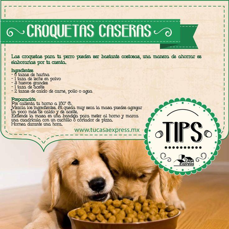 Las croquetas #alimento para tu #perro pueden ser bastante costosas, una manera de ahorrar es elaborarlas por tu cuenta. Tu Casa Express.