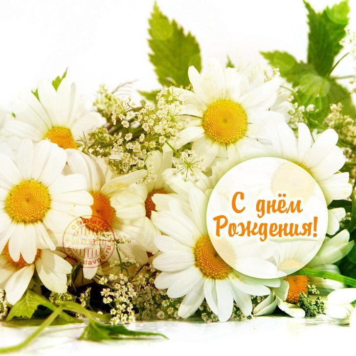 Поздравления, с день рождения открытки цветы