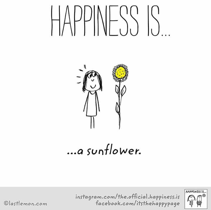 ~Happiness is a Sunflower~