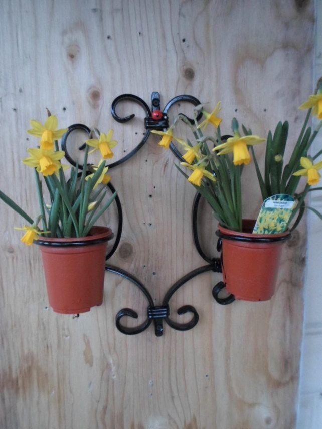 Wrought Iron Quot Ladybird Quot Plant Pot Holder Kit Wrought