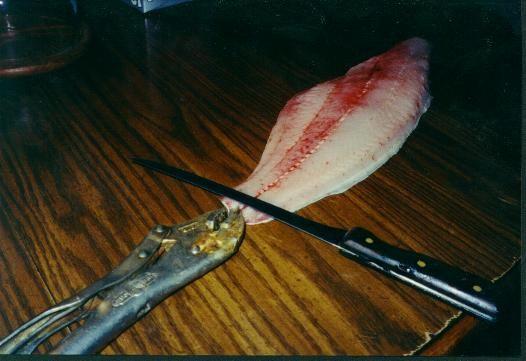 Skinning Catfish Tip