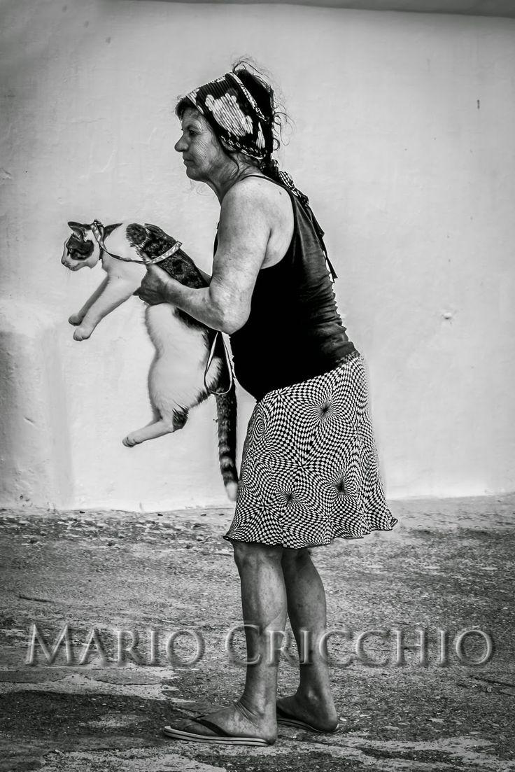 La gattara del #Porticciolo di #Pastena, #Salerno