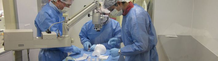 So judge your need and go for #CorneaTransplant through doctors. - http://goo.gl/Zej1UB
