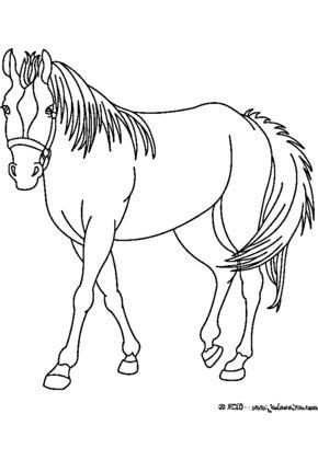 die besten 25 ausmalbilder pferde ideen auf pinterest pferde malvorlagen malvorlagen pferde. Black Bedroom Furniture Sets. Home Design Ideas