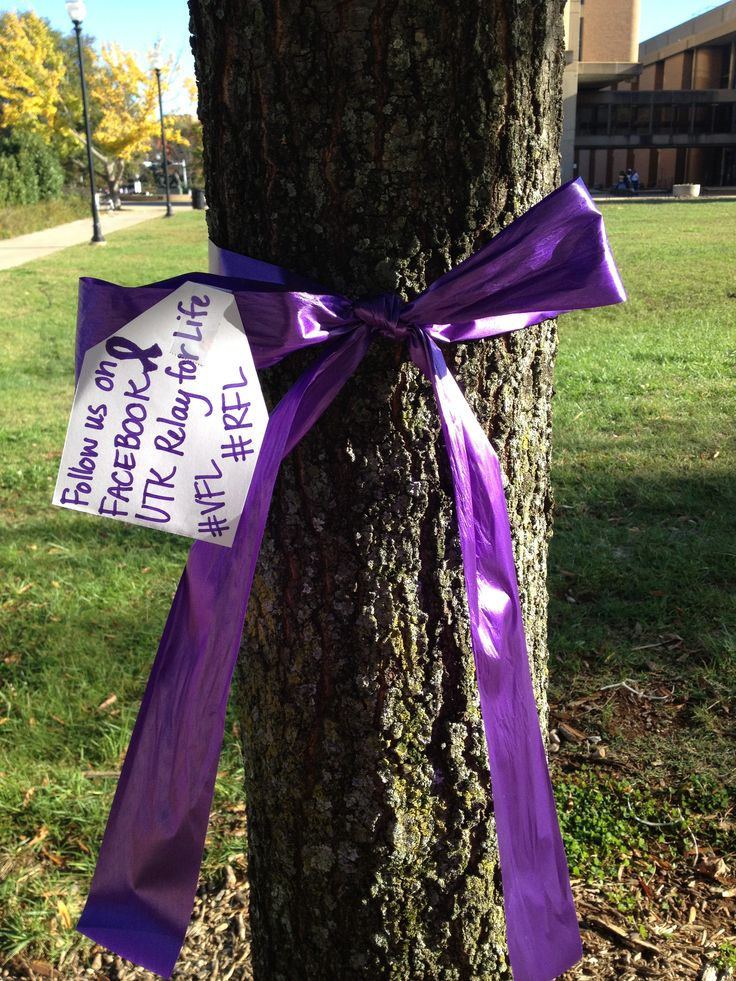 Ribbons on trees with our social media info