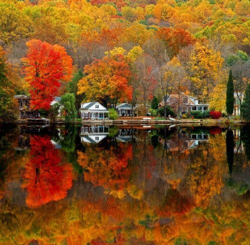 Cabins by the lake - total internal reflection, too! Physics and water and light and colour!: Unique Pictures, Lakes House, New England, Autumn Scenery, Fallcolor, I Love Fall, Newjersey, New Jersey, Fall Color