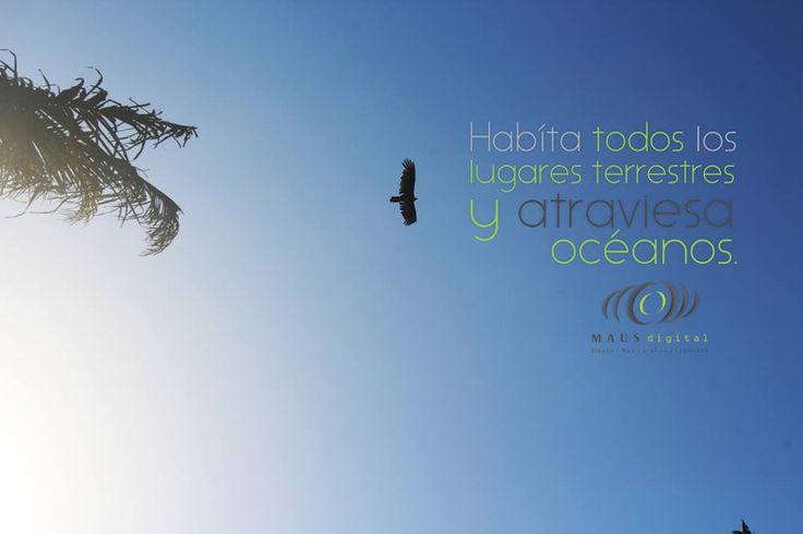 Habita todos los #lugares #terrestres y atraviesa #océanos