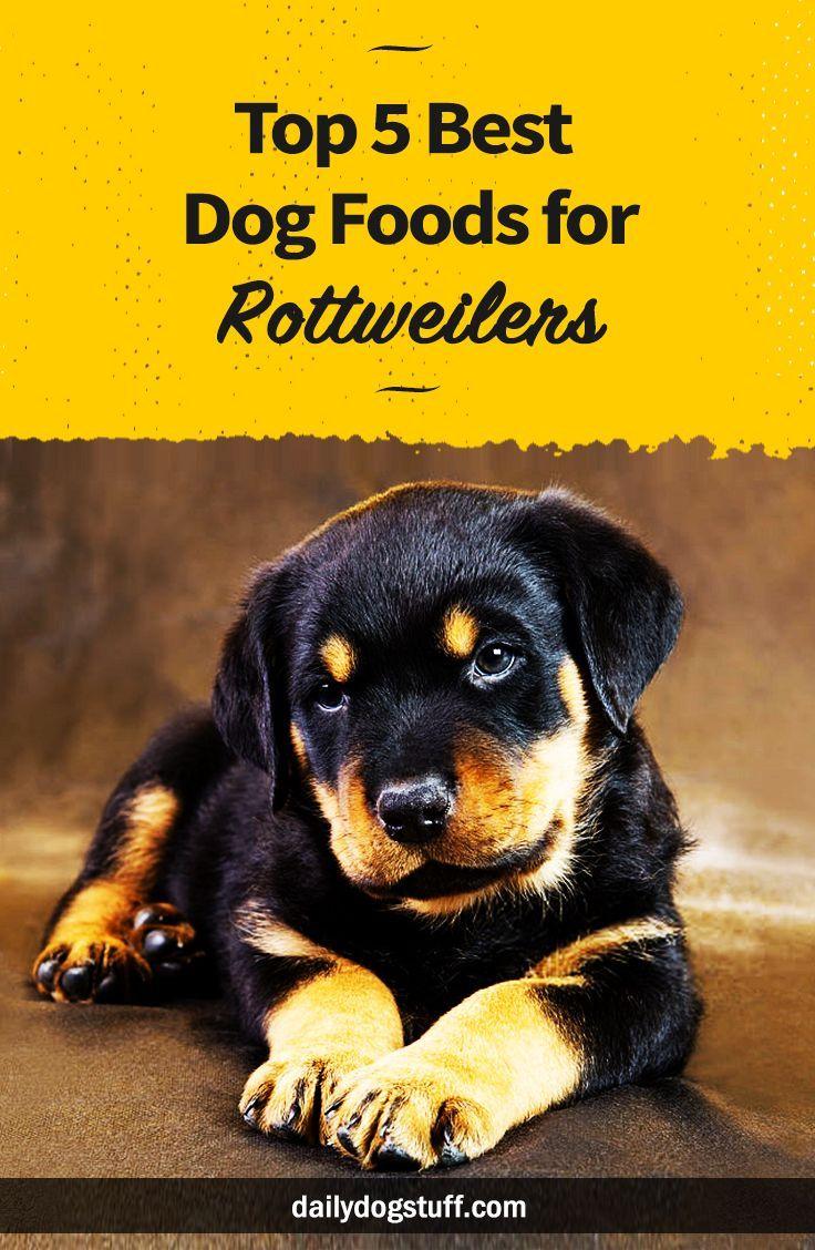 Top 5 Best Dog Foods For Rottweilers Best Dog Food Rottweiler