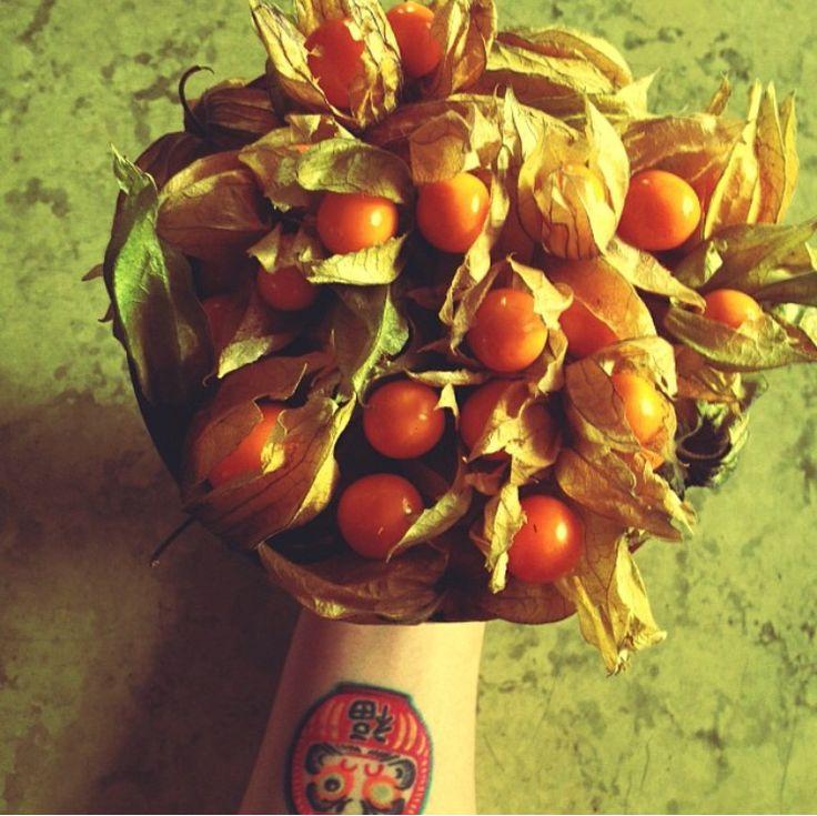 Aguaymanto / Golden Berries