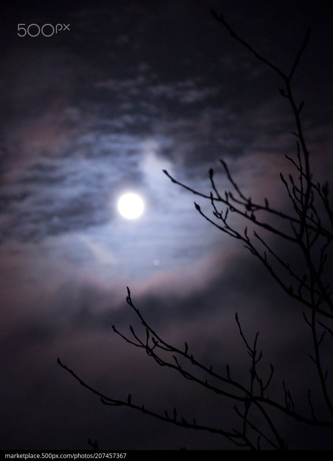 Cloudy Full Moon  High resolution model: https://500px.com/photo/207457367  © Rau Hartmann Galaxy  #photography #sky #forest #night #clouds #tree #branches #moon #black #dark #mysterious #full #moon