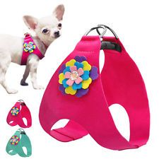 Soft Suede Pet Dog Harness Vest with Flower Stud Step-in for Small Dogs XS S M L