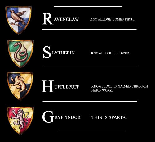 Hahahahaha! THIS IS SPARTA. That sums up Gryffindor, unless you're Hermione of course.