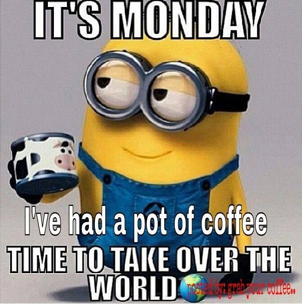Funny Monday Coffee Meme : Best images about minions on pinterest teaching