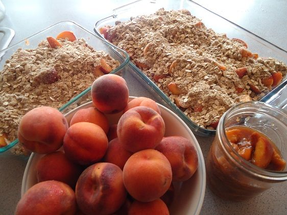 peaches_august_13 - 10 healthy and easy peach recipes