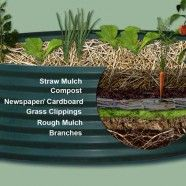 How to layer material for a raised bed garden without importing expensive potting mix & topsoil: Layer: Straw mulch, Compost, Newspaper/ cardboard, Grass clippings, Rough mulch, Branches.