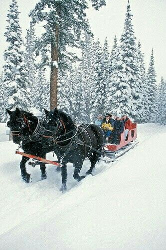 32# Sleigh rides reminds me of home.