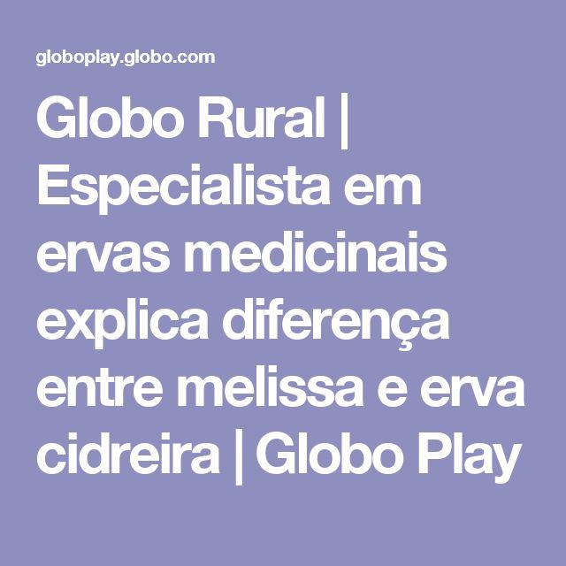 Globo Rural   Especialista em ervas medicinais explica diferença entre melissa e erva cidreira   Globo Play