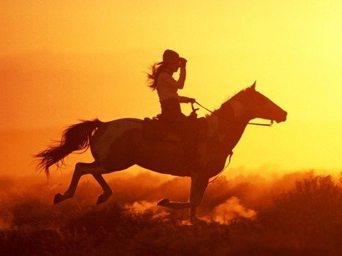 Head on home at sunset, the horse picks up speed... she knows her food and a nice combing down is waiting for her at the end of a working day (all days are working days for cowgirls and their horses)