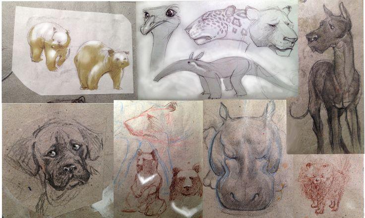 animal sketch Simona Cornacchia