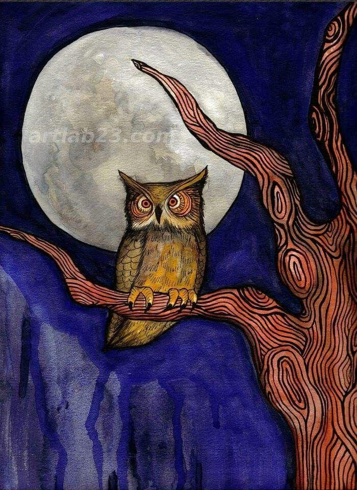 Картинка для детей сова на дереве