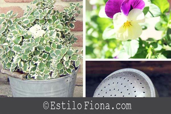 Accesorios y objetos de zinc para decorar el jard n el - Objetos para decorar jardines ...