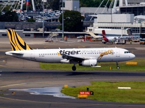 Tiger Airways A320 landing at Sydney  Type: Airbus A320-232  Registration: VH-VNH  Location: Kingsford Smith International  Date: 27/11/2011