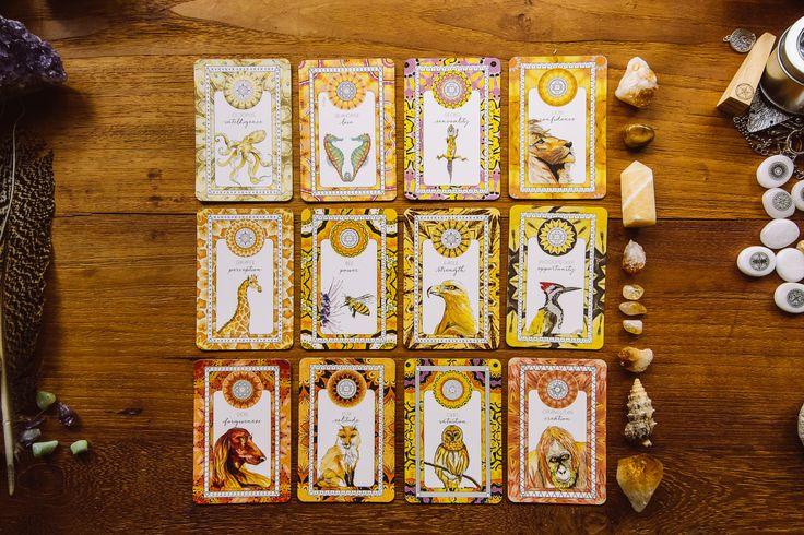 Our beautiful Animal Kin Oracle Deck #tarot #tarotcards #oraclecards #animalkin #spiritanimal #dailydraw #bts #TFEL #flatlay