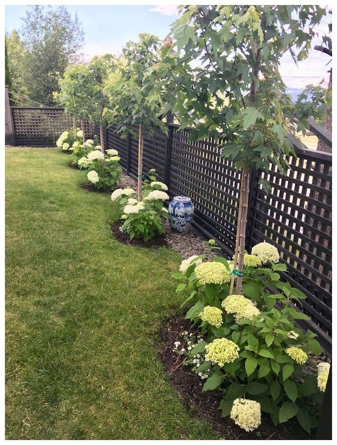 54 backyard landscaping ideas on a budget 10
