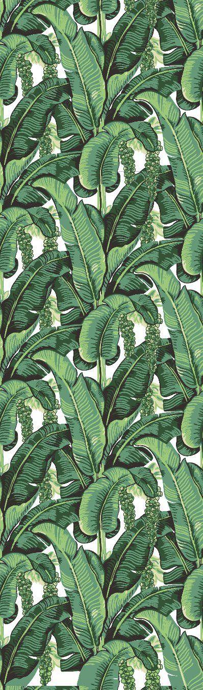 17 best ideas about tropical wallpaper on pinterest - Easy peel off wallpaper ...