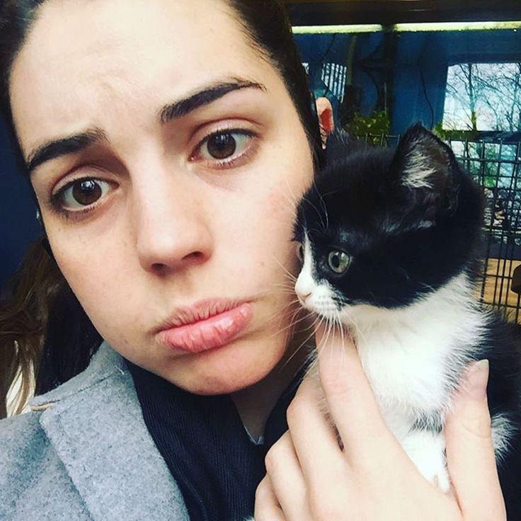 女優のアデレード・ケインさんのInstagram(インスタグラム)写真「When the local vet has kittens for adoption but you can't because you're not a spinster yet ??? #dailysquee #s」