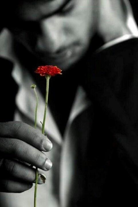 : But, Colorsplash, Touch, Red Flower, Colour Splash, Color Splash, Black White, Posts, Photo