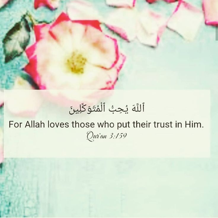 """23 Likes, 1 Comments - Allah is with me (@love__allah) on Instagram: """"#Allah #islam #muslim #dhikr #love #mercy #lost #sad #lonely #patience #sabr #motivation #peace…"""""""